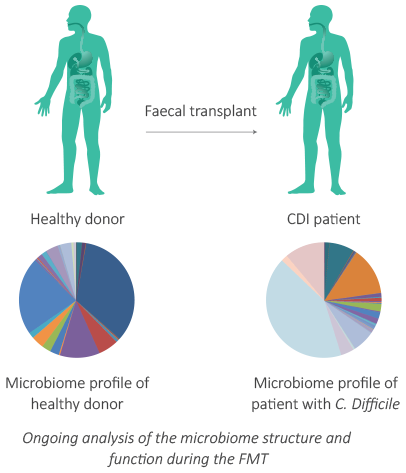 Microbiome profile of healthy donor and patient with C. Difficile