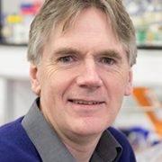 Martin Warren