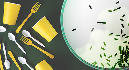 Web banner yellow and white dishes on a green background. Plastic utensils. Ecological problem. Kitchen. Culinary blog.