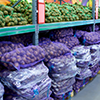 Commercially stored potatoes
